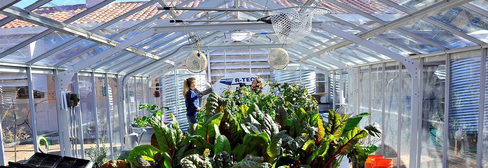 Our green house offers an exciting learning environment.